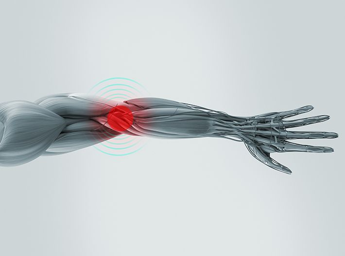 muscle-joint-collagen