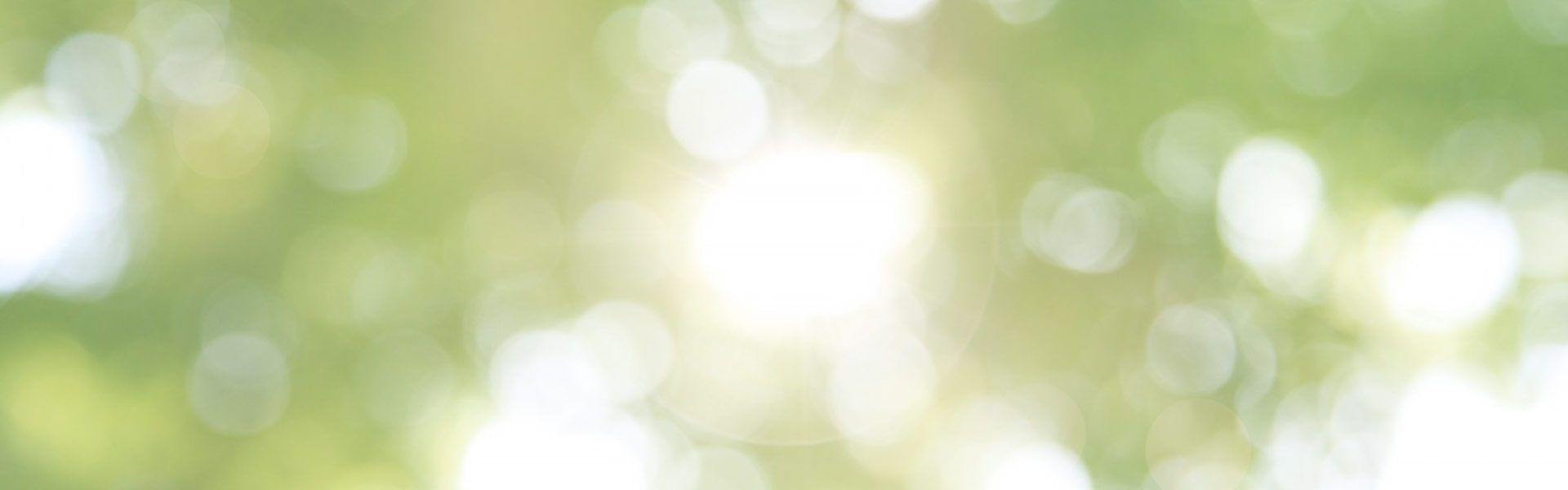 green and white light backroung